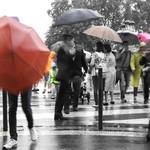 Les couleurs de la pluie