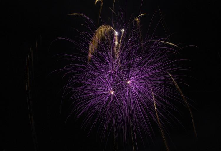 Ephémère violet et or